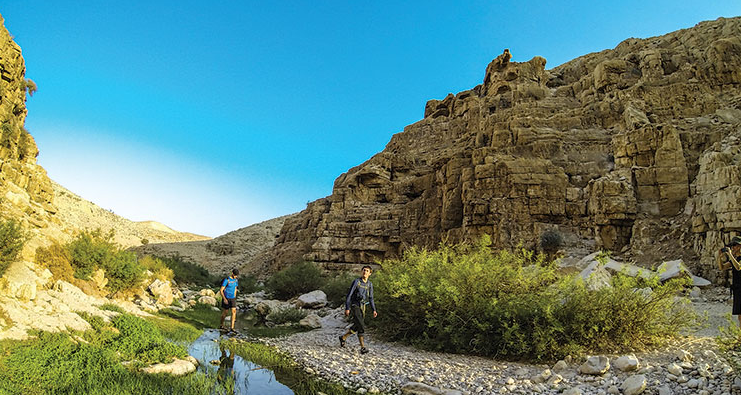 A stream in Wadi Qelt; ancient aqueducts brought water form here to Jericho. Photo by David Landis